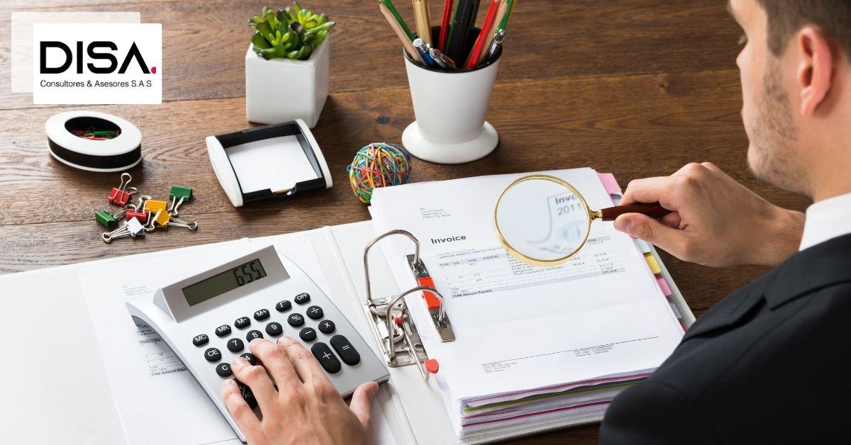 control interno y revisoria fiscal